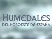 Humedales del noroeste de Espaa